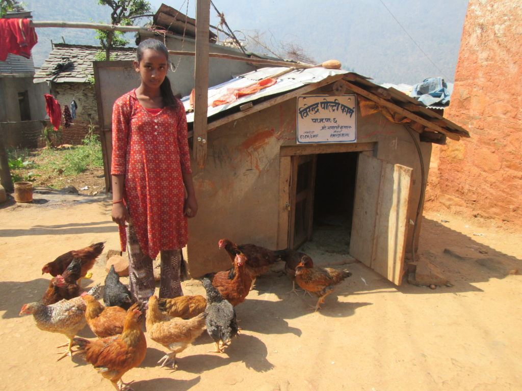 Poultry Support to Mrs. Bhagrathi Kumal at Patan